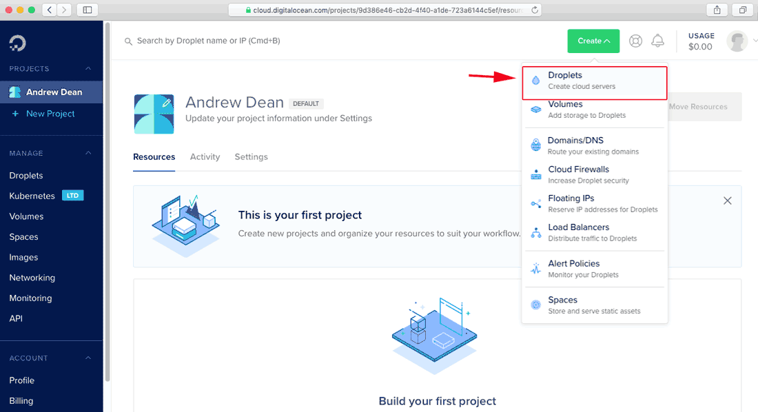 Create a droplet from digitalocean control Panel