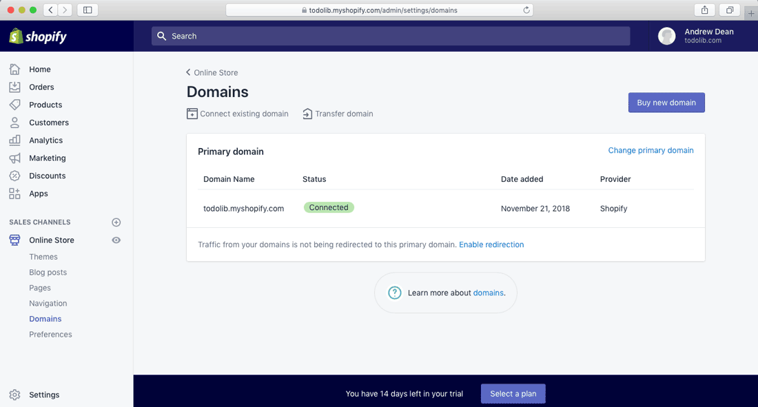 shopify store setup domains panel