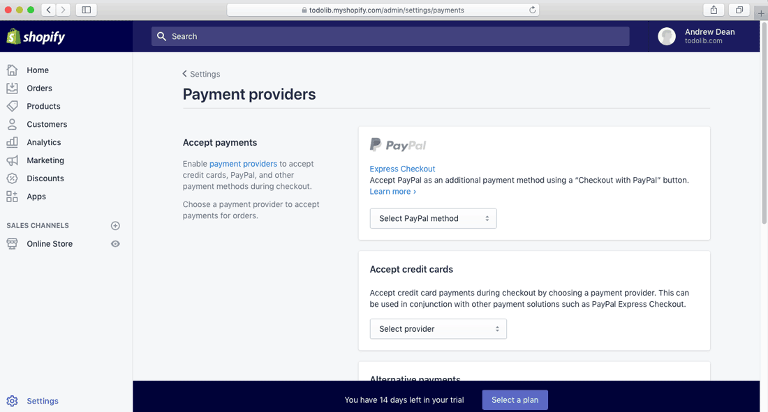 shopify store setup payment providers